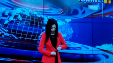 hornbill tv