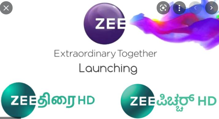 Zee Thirai HD & Zee Picchar HD